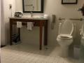Sheraton Bathroom 2