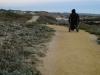 asilomar_state_beach5
