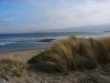 Bodega Bay Regional Park