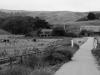 highway1_near_bodega_bay
