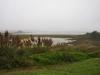 bodega_bay_lodge_view_2