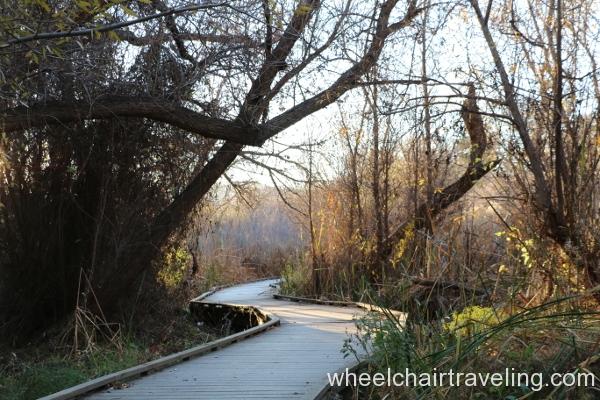 6_Marsh Trail