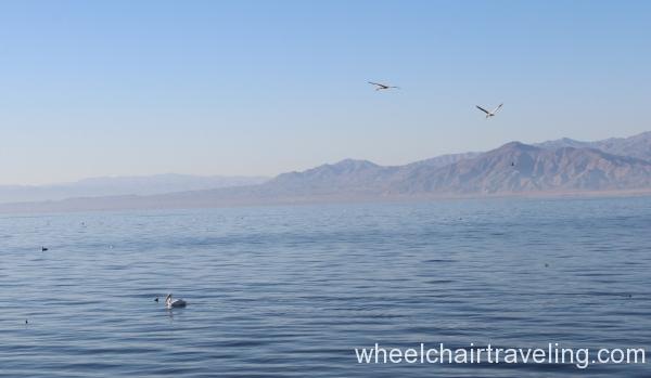 11_Salton Sea.JPG