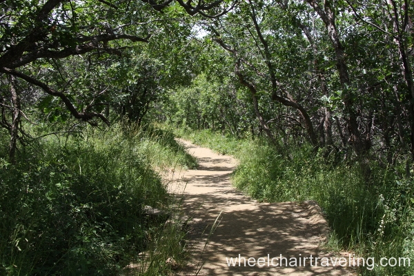 Inaccessible trail- maybe ok for some.JPG