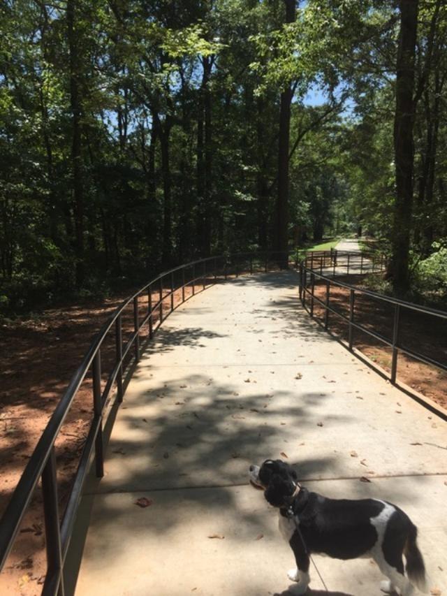 Matt-Community-Park-9