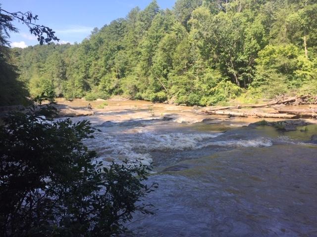 Amicalola-river-trail-35