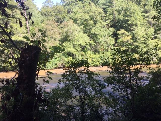 Amicalola-river-trail-8