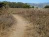 half_moon_bay_coastside_trail