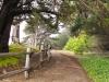half_moon_bay_coastside_trail10