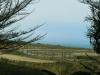 half_moon_bay_coastside_trail6