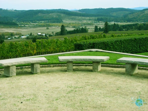 or_king_estate_winery_3