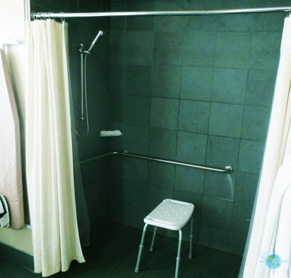 roll-in shower bathroom setup