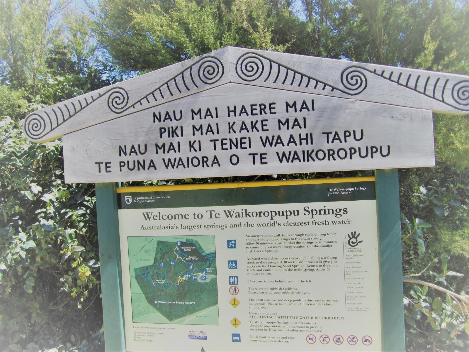 Te-Waikoropupu-Spring-Walk-6.2