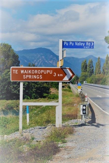 Te-Waikoropupu-Spring-Walk-7.2