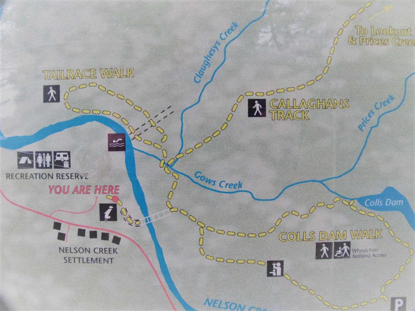 map-of-the-nelson-creek-area-tracks.2
