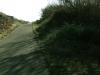 arcata_hammond_trail_3