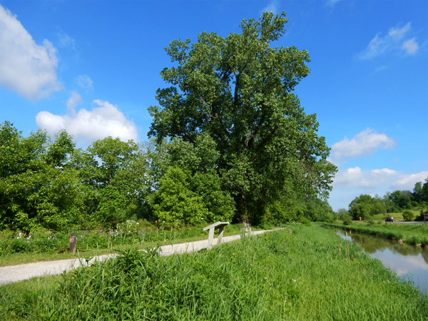 cuyahoga_valley_np_86