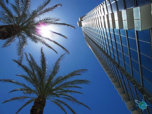 las_vegas_palms_hotel_1