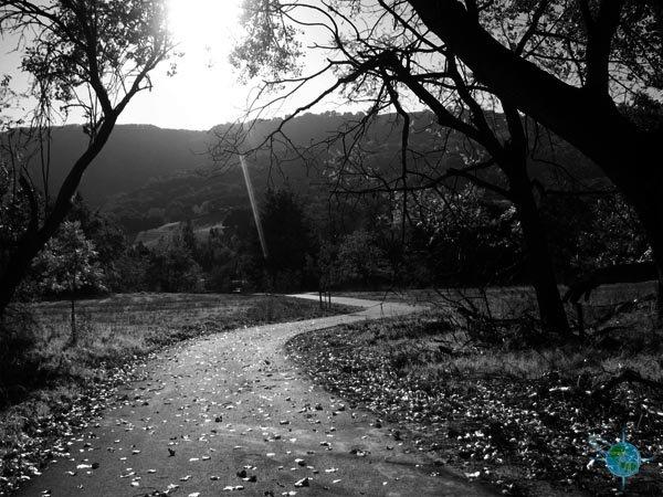 Marilyn Murphy Kane Trail