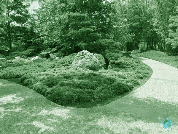 san_diego_balboa_park_gardens_5