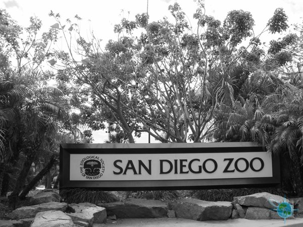 san_diego_zoo_1
