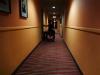 rex_hotel_9