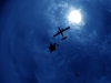 skydiving_small_14