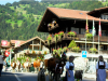 Swiss Cheese Festival