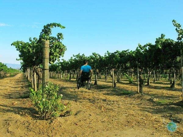 temecula_wine_country_7