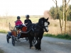 carriage-driving