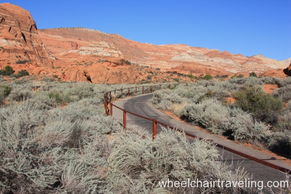 09_Whiptail Trail
