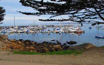 Monterey, CA Wheelchair Access Travel Guide