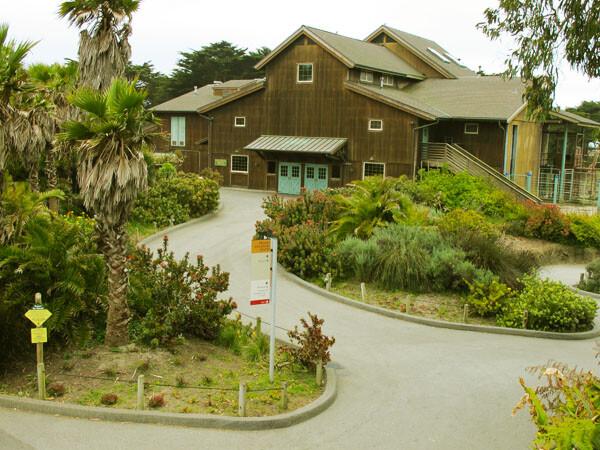 Access at the San Francisco Zoo
