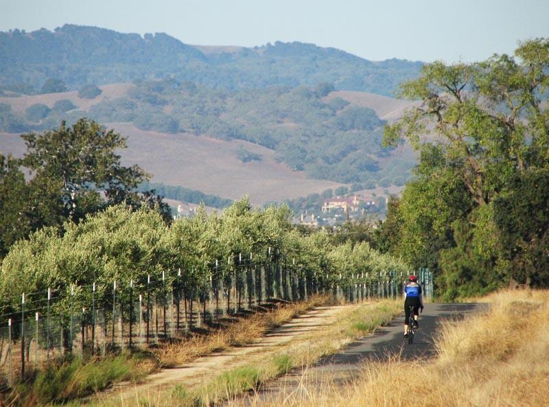 Livermore, California: Wine Country