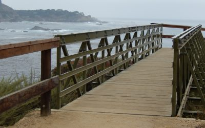 Point Lobos State Natural Reserve Wheelchair Hiking
