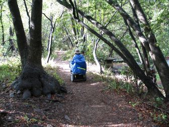 CA Coast: Pfeiffer Big Sur State Park Accessibility