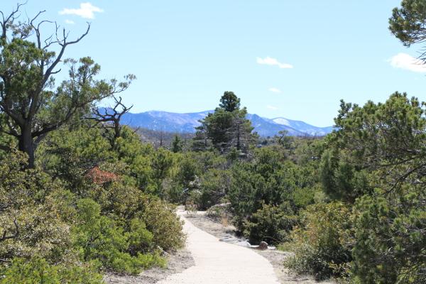 Arizona: Chiricahua National Monument