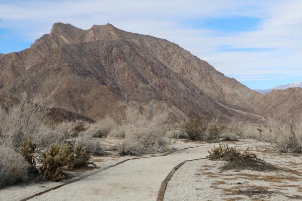 Anza-Borrego Desert in Southern California