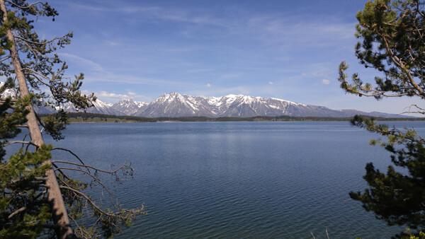 Yellowstone + Grand Teton National Park