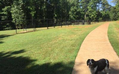 Cumming, Georgia: Caney Creek Preserve