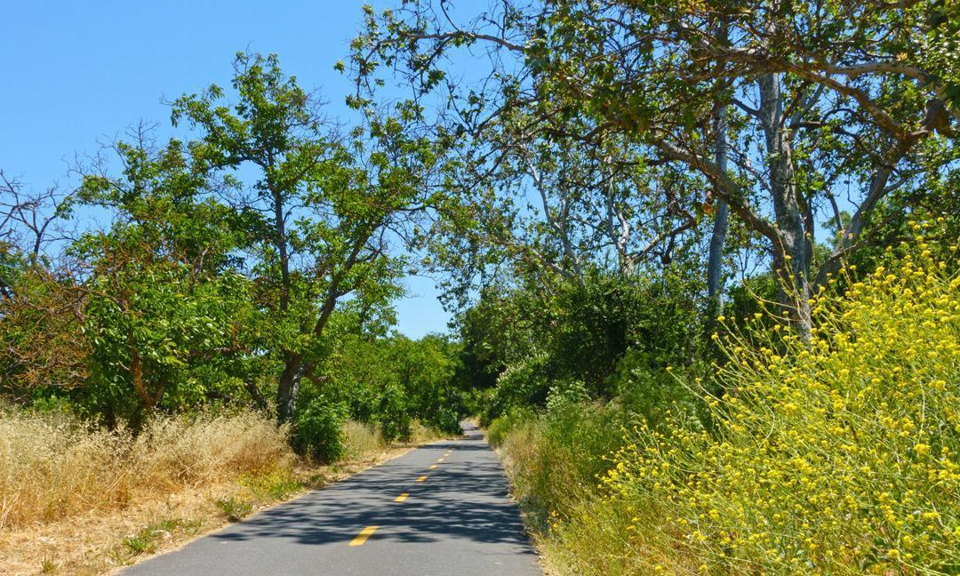 Coyote Creek Parkway: Santa Clara County, CA