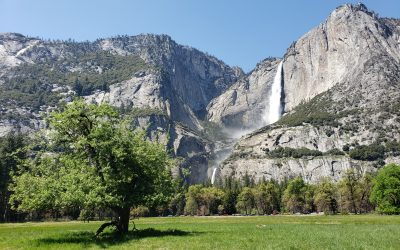 Overview: Yosemite National Park