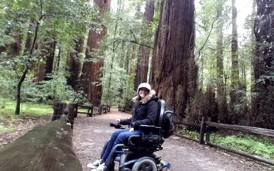 Henry Cowell State Park + Wheelchair Hiking